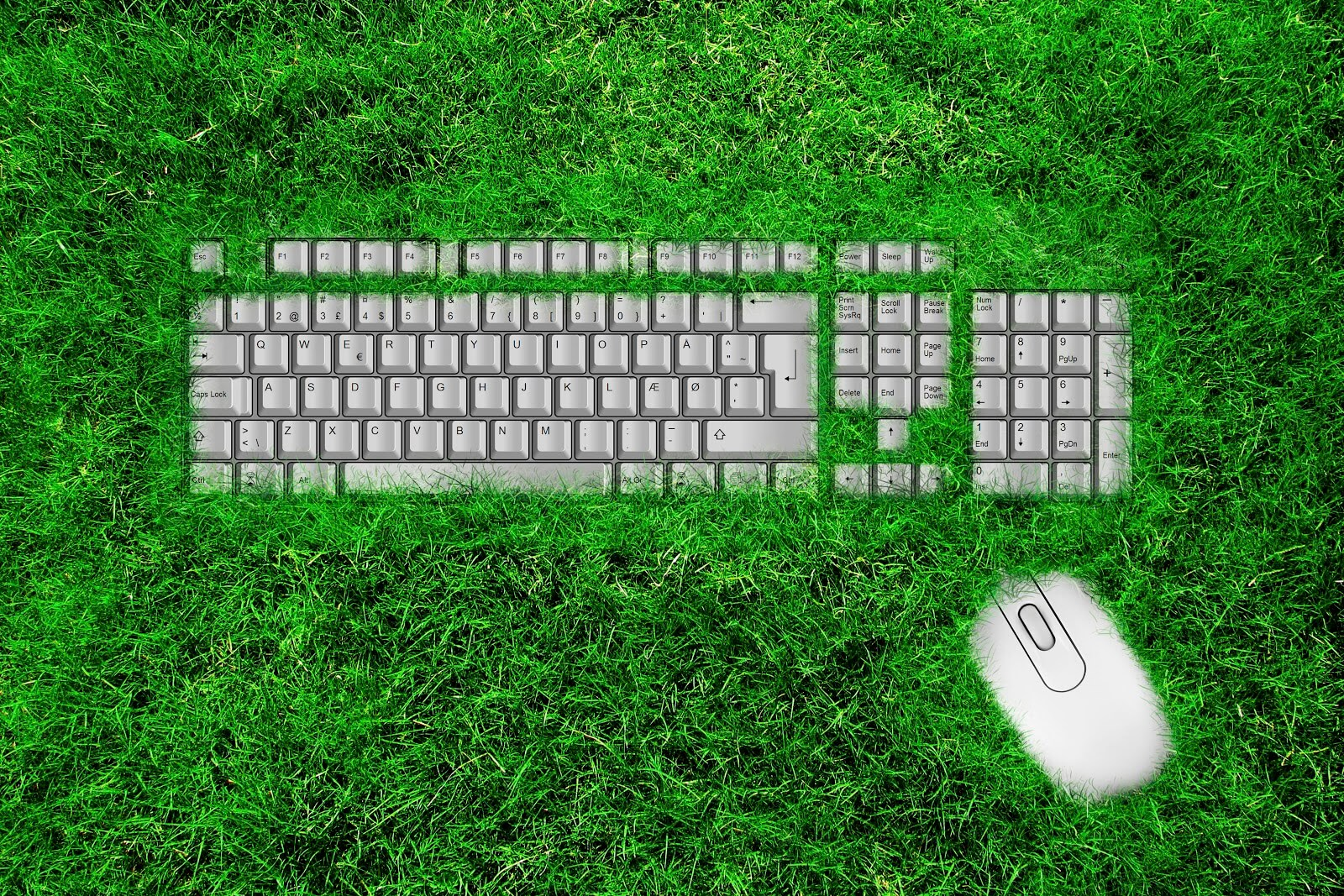 a keyboard with grass covering it